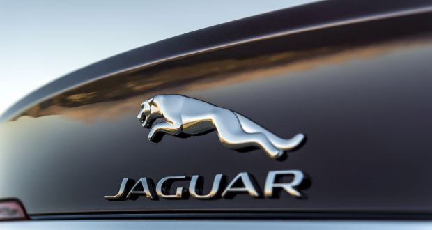 Jaguar_badge_620