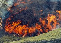 Edfall lava flow