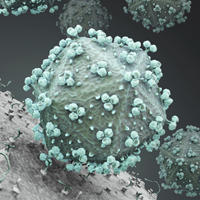 hiv pandemic spread