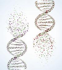 human genome project pdf 2015