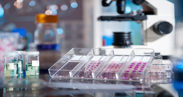 future of drugdiscovery essay More and more, big pharma is partnering with ai-driven companies in hopes of more accurately predicting drug candidates and cutting r&d costs and time, prompting globaldata to ask—is ai the future of drug discovery.