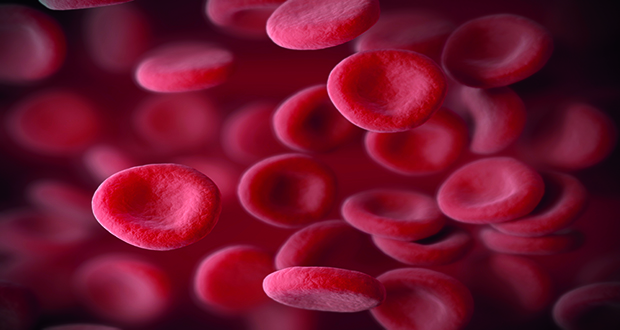 Blood doping allows for increased numbers of red blood cells in the body, resulting in more oxygen being transported around the body.