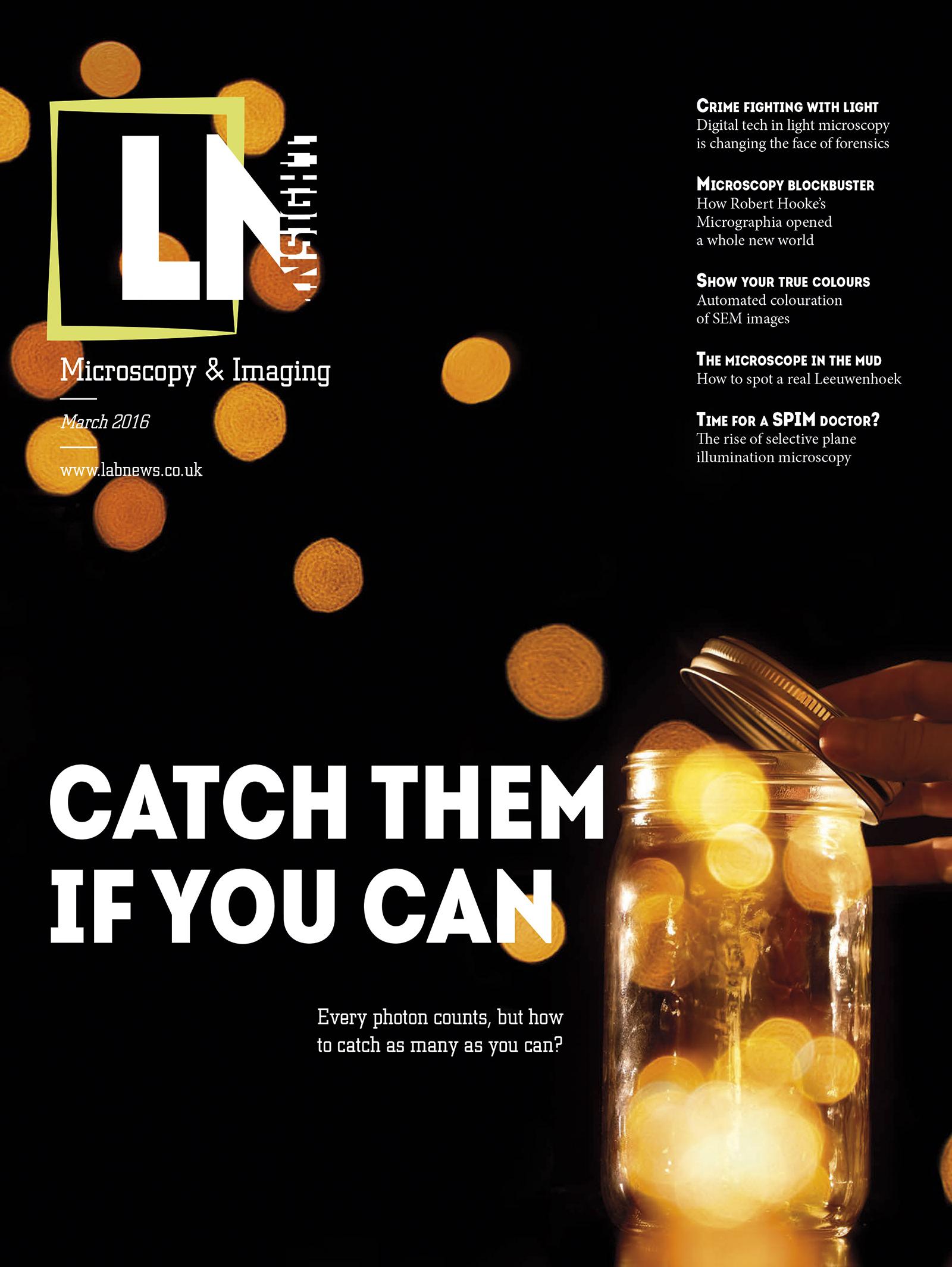LN Insight Microscopy & Imaging