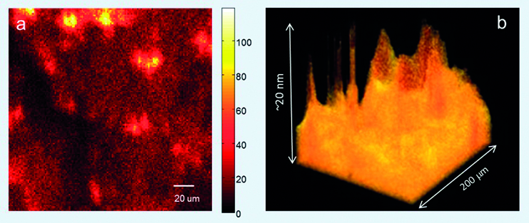 Figure 1 (Top Left): a. Image of a polymer-coated graphene sheet. The lighter the colour, the more polymer is present. b. A 3D visualisation of the same image, with yellow representing the polymer layer attached to the graphene. Images were obtained using time-of-flight secondary ion mass spectrometry (ToF-SIMS).